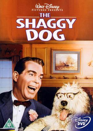 Shaggy ä' de' du de'? poster