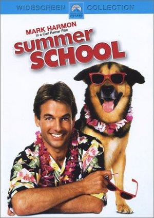 Summer School poster