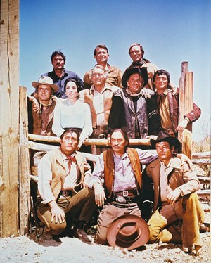 High Chaparral poster
